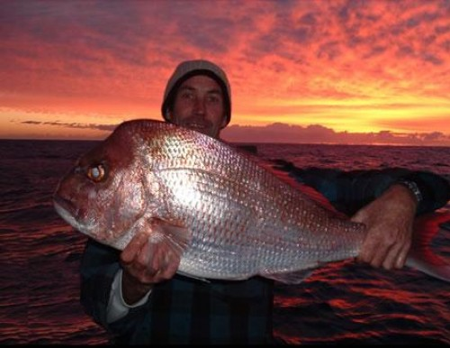 Fishing Offshore Noosa photo1