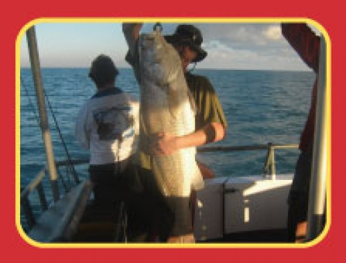 Darwin Red Devil Charters photo1