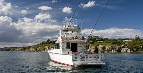 Sydney Luxury charters photo1