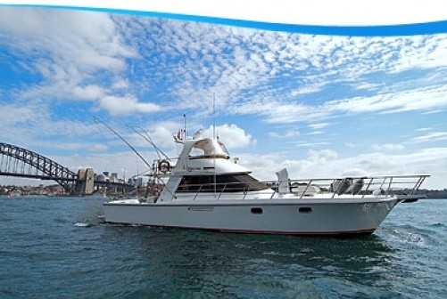 Sydney Luxury charters Photo 2