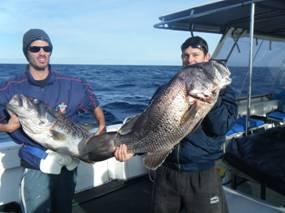 2 big fish